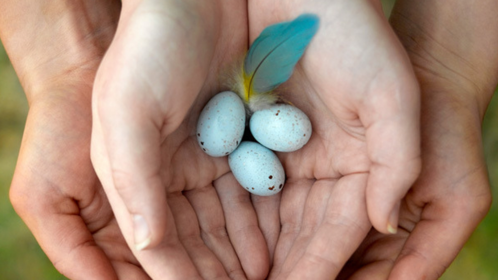How Chinese Medicine can promote female fertility and improve egg quality