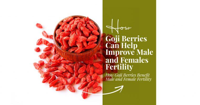 How Goji Berries Can Help Improve Male and Females Fertility