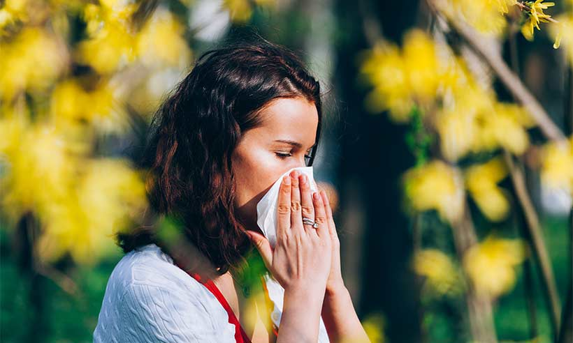 natural herbs for hay fever with chinese medicine