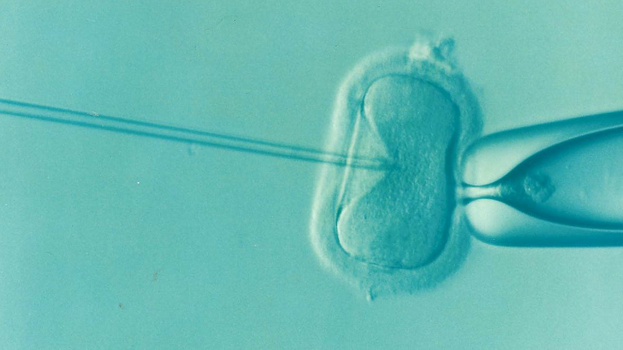 How to boost your fertility after an unsuccessful IVF