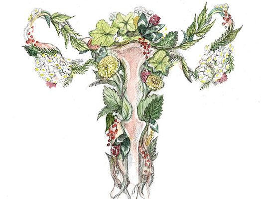 Uterine Fibroid : A Natural Chinese Medicine Approach