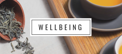 wellbeing experts