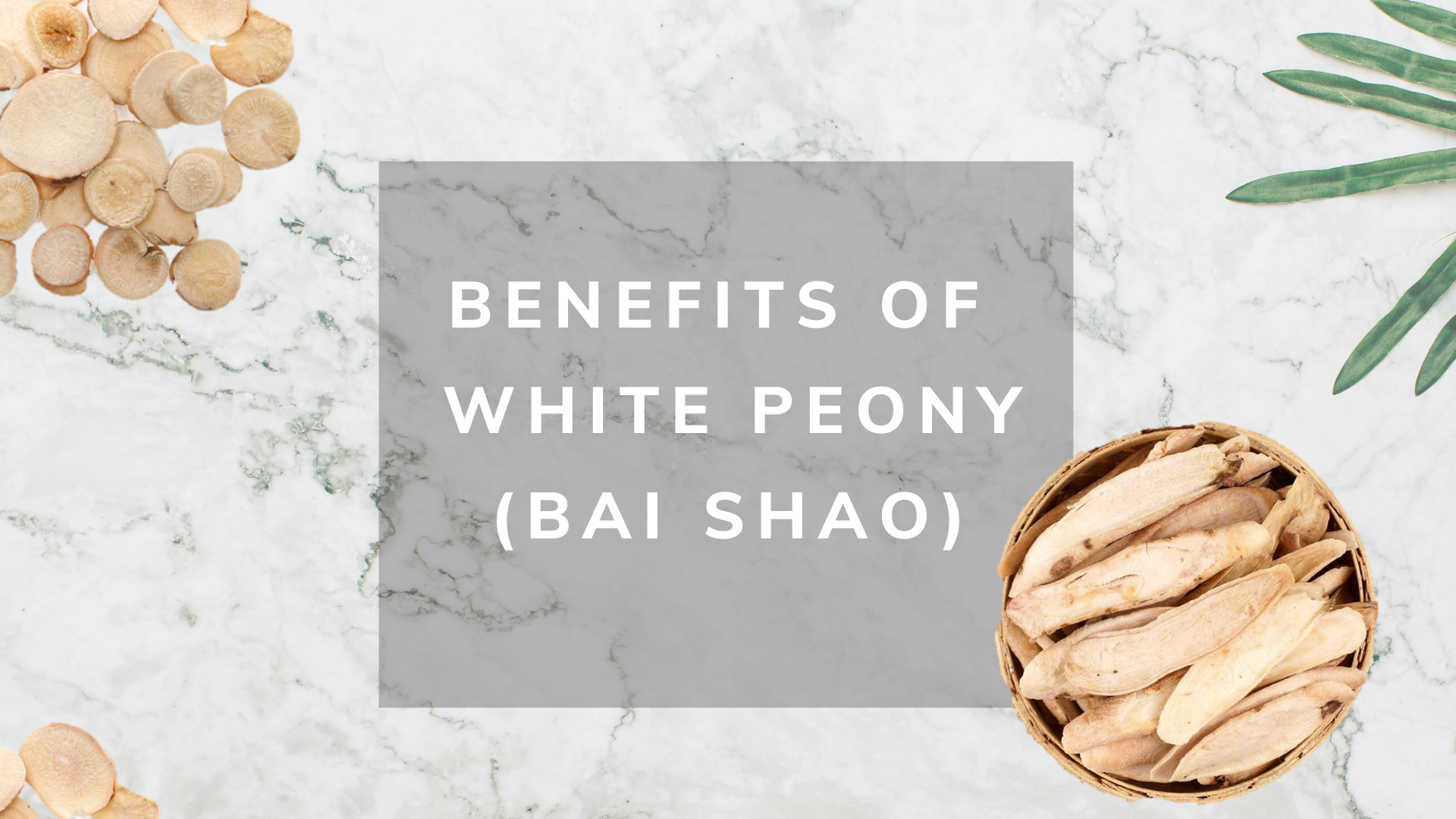 Benefits of White Peony ( Bai Saho )