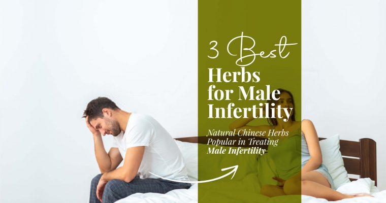 3 Best Herbs For Male Infertility