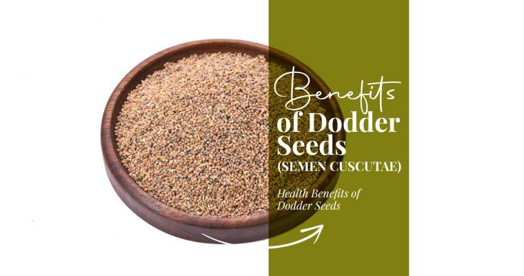 Benefits of Dodder Seeds (Semen Cuscutae)