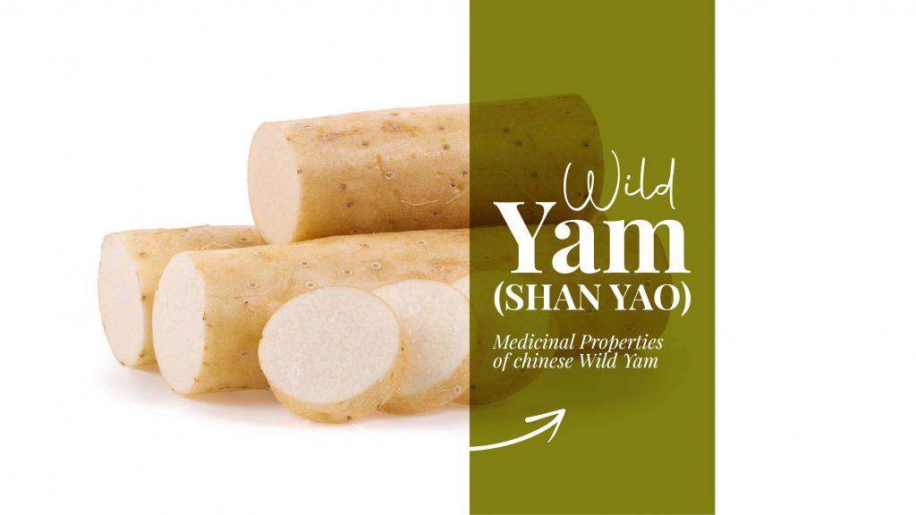 wild yam chinese medicine