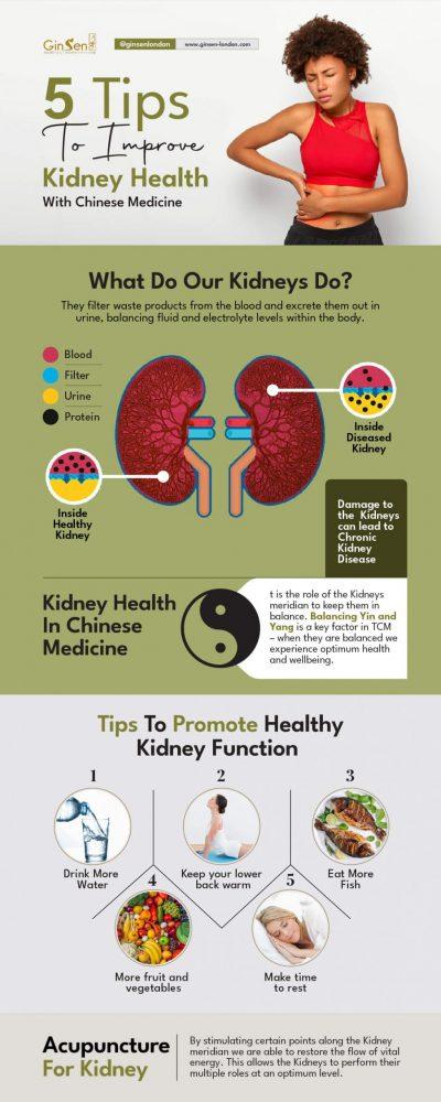 kidney health in Chinese medicine